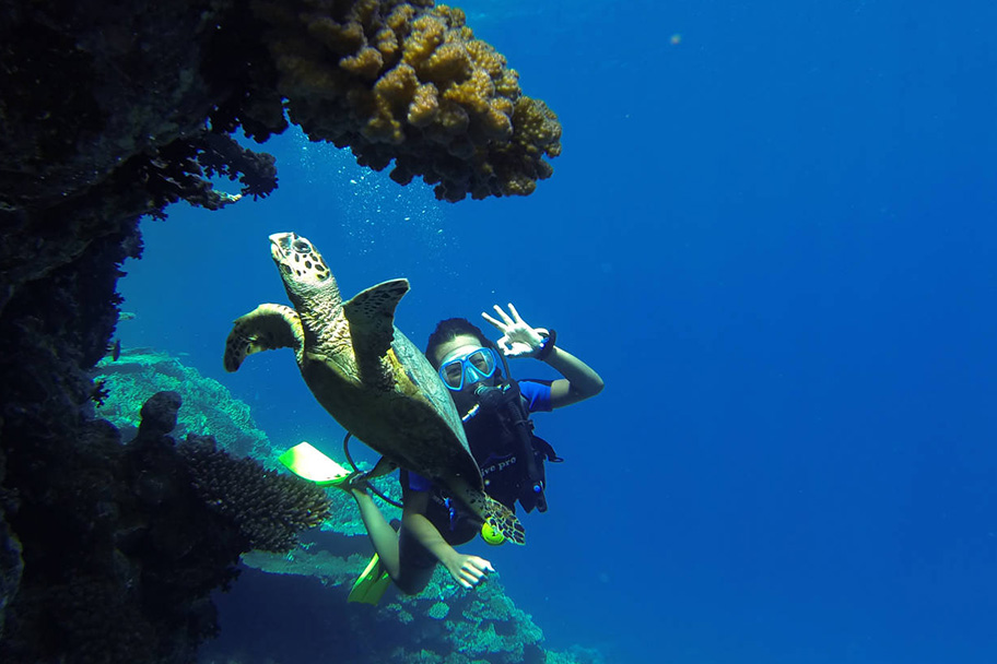 PADI Project-Aware Spezialist Hurghada
