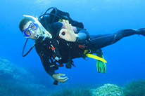 6 Days Dive Package